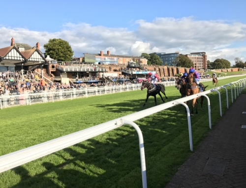 APAM's Annual Event at Chester Races